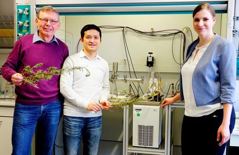 Green chemistry in the fight against malaria
