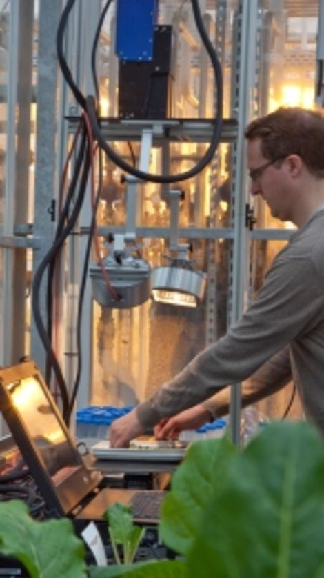 Project Manager Dr. Andreas Backhaus of the Fraunhofer-IFF places leaves from sugar beet plants on test bowls with a weakly reflective underlay. The test objects are shifted relative to the camera on a translation stage and scanned line by line.